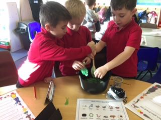 brilliant instruction writing in Y1…… what will go into the cauldron? What are 'bossy verbs?'