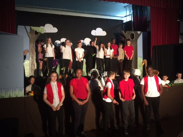 The Ugly Duckling by Parklands Y6