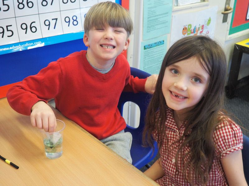 Chromatography with Year 2
