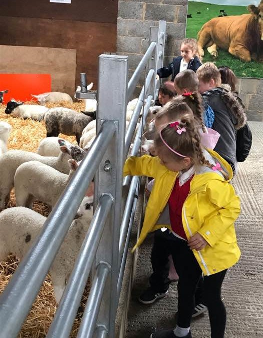 Reception visit Hesketh Farm